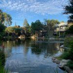 Lakewood Shores Image 4